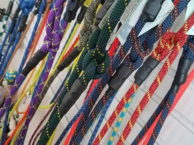 a display of pet leashes